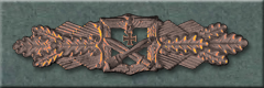 Close Combat Clasp, Bronze