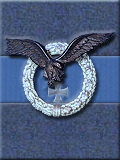 Luftwaffe Combat Wings, Black