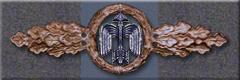 Air Combat Clasp, Bronze