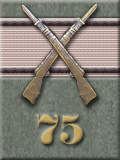 Infantry Kill Badge, Silver