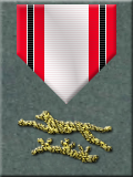 OP Participation Award, Plain