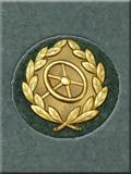 Drivers Badge
