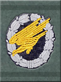 Mission Jump Patch